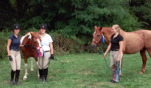 Practice pays off at the horse show